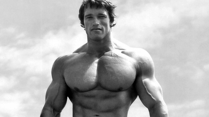 arnold-730x411