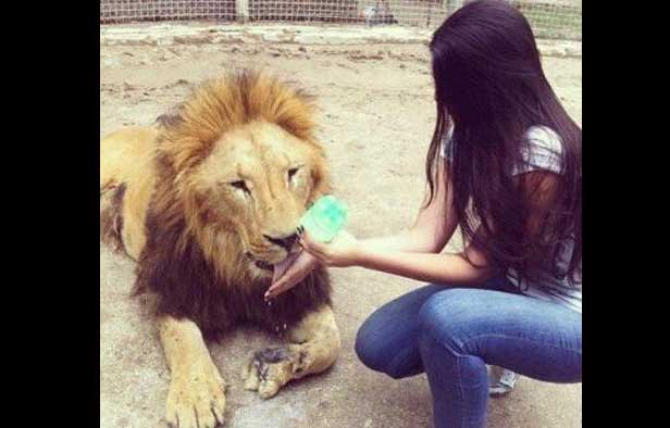novia-leon